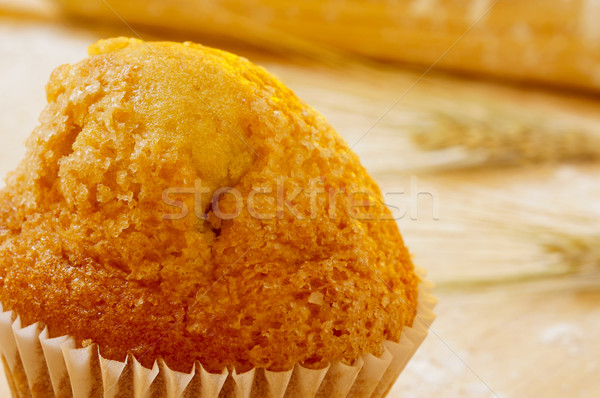 magdalena, typical spanish plain muffin Stock photo © nito