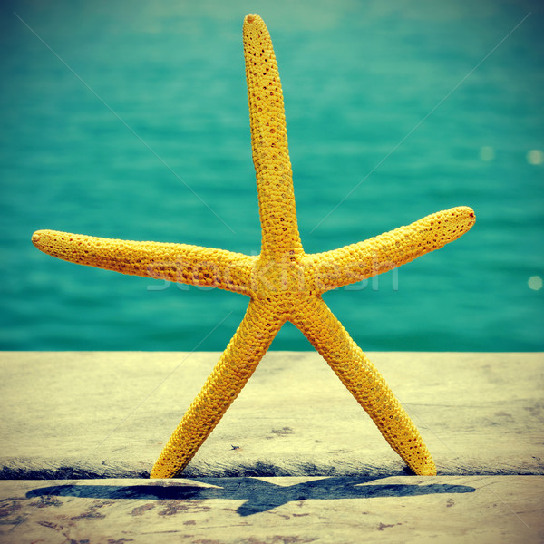 starfish on an old wooden pier on the sea, with a retro effect Stock photo © nito