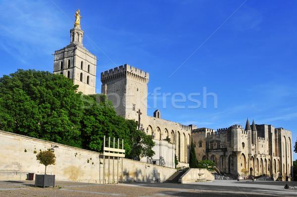 Palais des Papes in Avignon, France Stock photo © nito