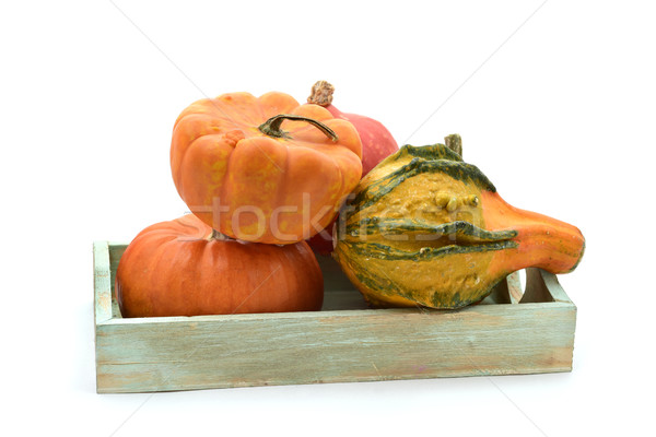 different pumpkins in a tray Stock photo © nito