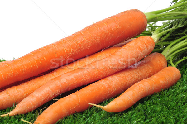 carrots Stock photo © nito