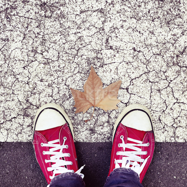 dry leaf on the asphalt and the feet of a young man Stock photo © nito