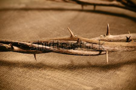 the crown of thorns of Jesus Christ and a nail on the Holy Cross Stock photo © nito