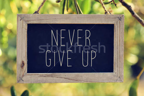 chalkboard with the text never give up Stock photo © nito