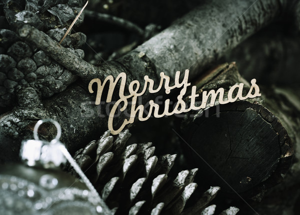 logs, pine cones and text merry christmas Stock photo © nito
