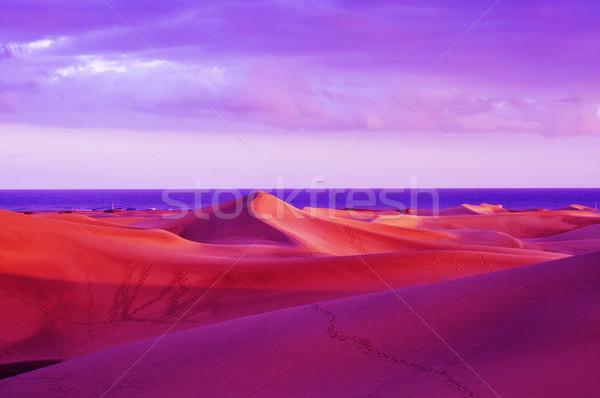 Natural Reserve of Dunes of Maspalomas, in Gran Canaria, Spain Stock photo © nito