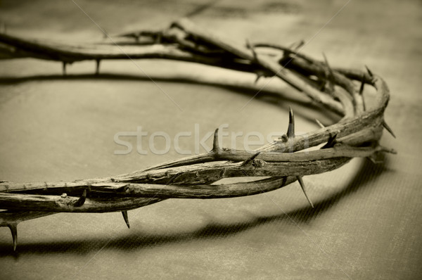 Jesus Christ crown of thorns Stock photo © nito
