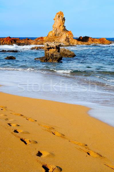 view of Cala Pregonda beach in Menorca, Balearic Islands, Spain Stock photo © nito