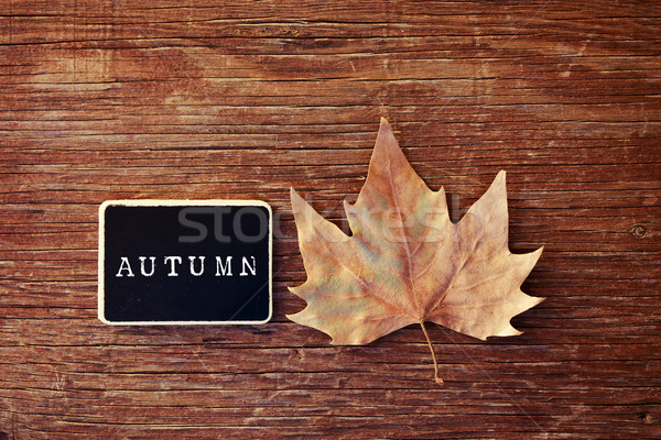 autumn leaf and chalkboard with the word autumn Stock photo © nito