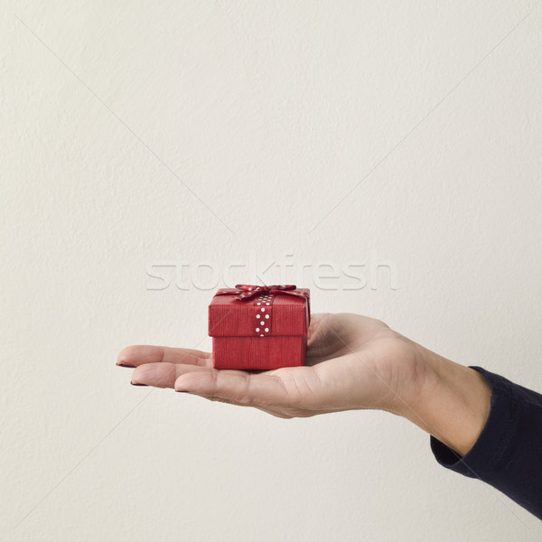 Jonge vrouw klein geschenk jonge kaukasisch Stockfoto © nito