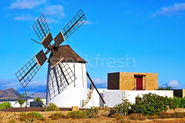 windmill in Tiscamanita, Fuerteventura, Canary Islands, Spain Stock photo © nito