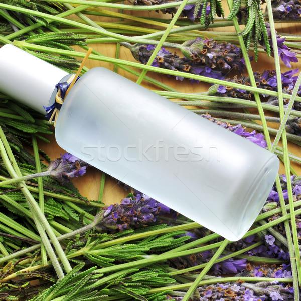 fresh cologne Stock photo © nito