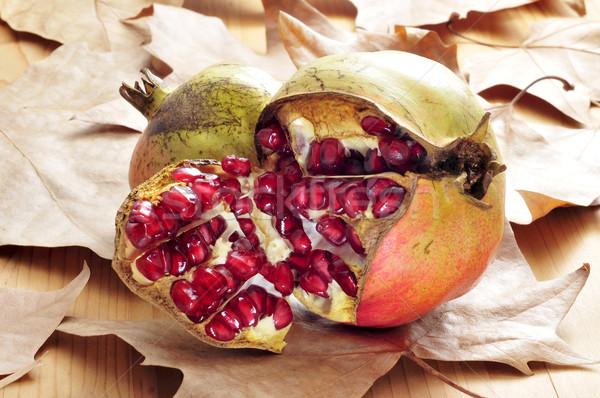 pomegranate fruits Stock photo © nito