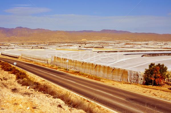 Intenzív gazdálkodás magas Spanyolország kilátás tájkép Stock fotó © nito