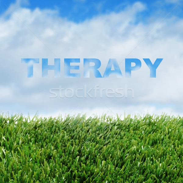 therapy Stock photo © nito