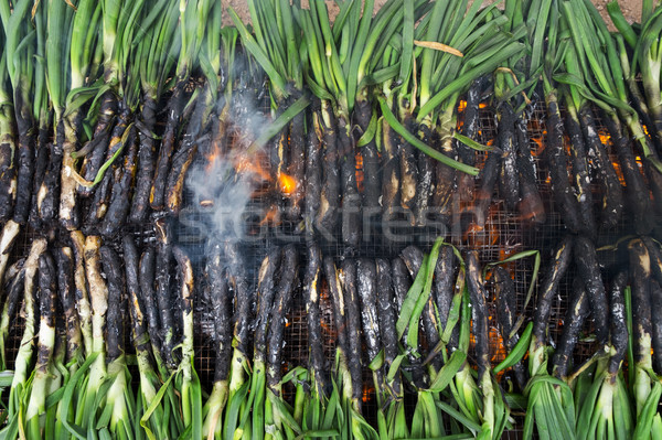 barbecuing calcots, onions typical of Catalonia