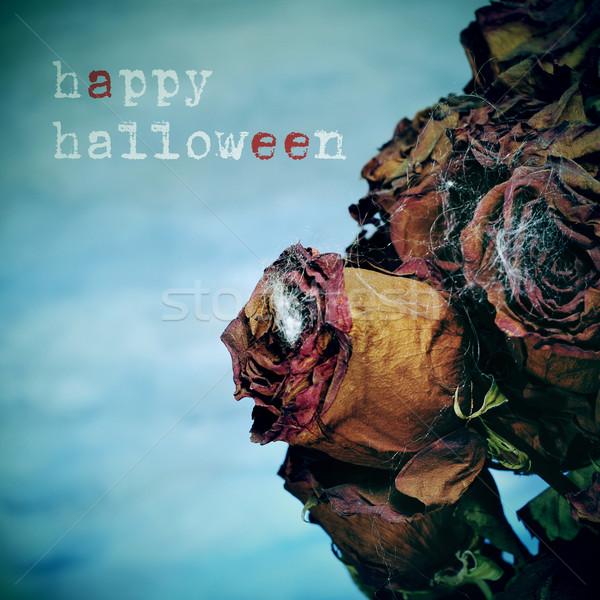 Gelukkig halloween boeket gedroogd rozen Stockfoto © nito