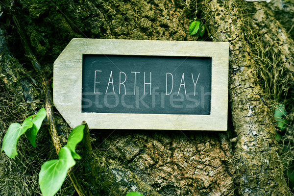 chalkboard with the text earth day in a tree Stock photo © nito