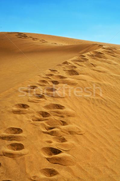 природного резерв Испания мнение Канарские острова Сток-фото © nito