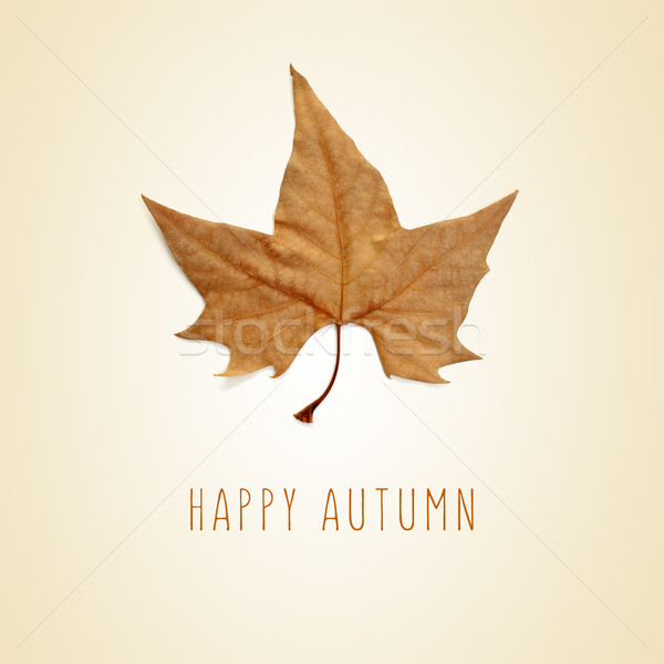dry leaf and the text happy autumn Stock photo © nito