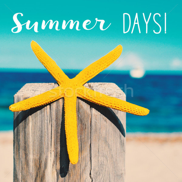 starfish on the beach and text summer days Stock photo © nito