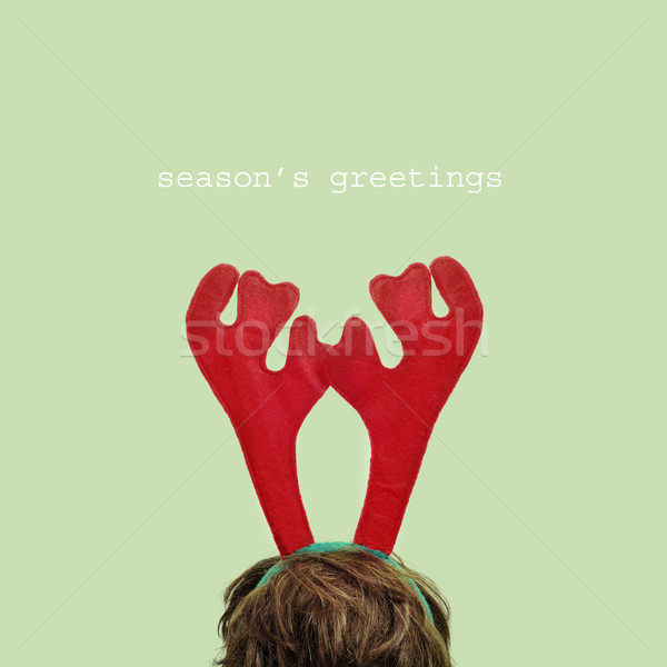 seasons greetings Stock photo © nito