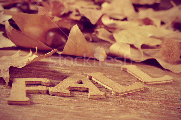 fall Stock photo © nito