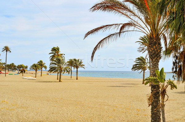 main beach of Carboneras in the Cabo de Gata-Nijar Natural Park, Stock photo © nito