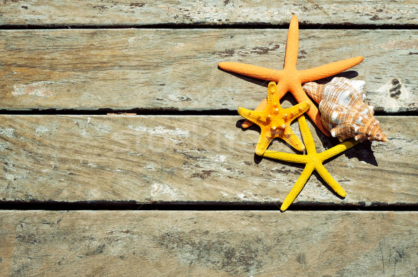 starfishes and conch on a wooden pier Stock photo © nito