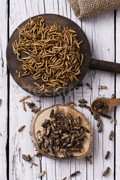 edible fried worms and crickets Stock photo © nito