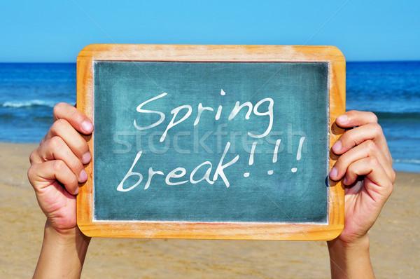 Tavaszi szünet valaki tart iskolatábla tengerpart írott Stock fotó © nito