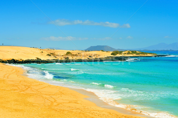 Stock photo: beach in Natural Park of Dunes of Corralejo in Fuerteventura, Sp