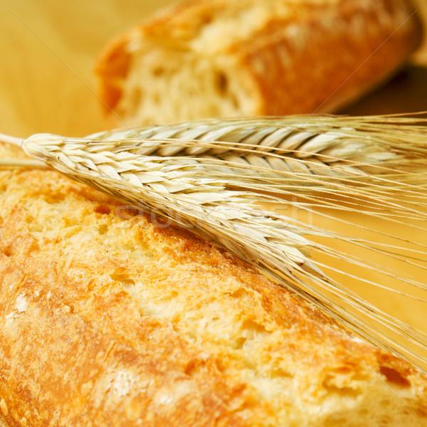 Сток-фото: хлеб · пшеницы · ушки · продовольствие · фон