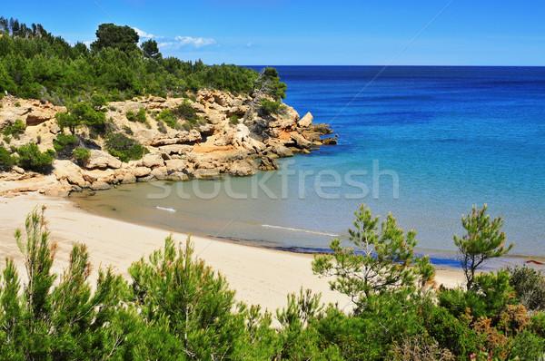 Cala Forn beach in Ametlla de Mar, Spain Stock photo © nito