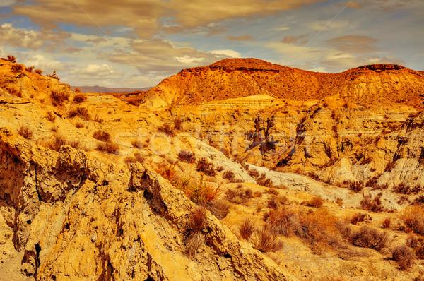 desert of Tabernas, in Spain Stock photo © nito