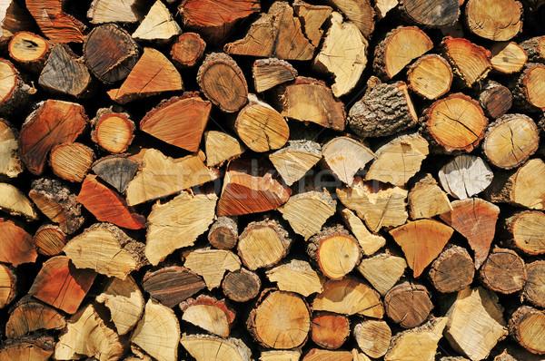 Lenha picado madeira floresta energia Foto stock © nito