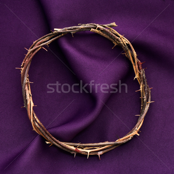 Couronne jesus christ coup pourpre Photo stock © nito