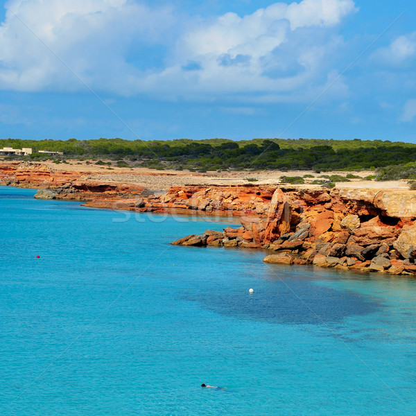 Cala Saona coast in Formentera, Balearic Islands, Spain Stock photo © nito