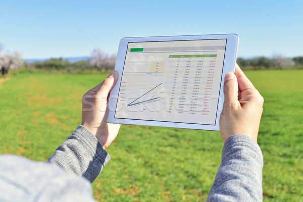 man observing some charts in a tablet in a fallow field Stock photo © nito