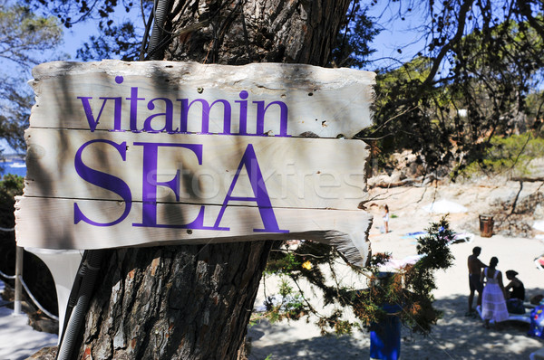 sign with the text vitamin sea on the beach Stock photo © nito