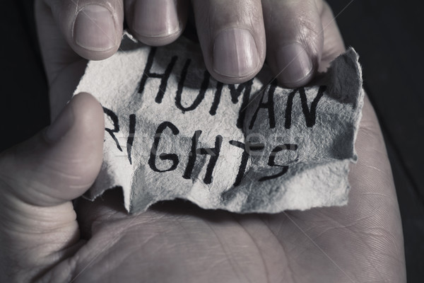 text human rights in a piece of paper Stock photo © nito