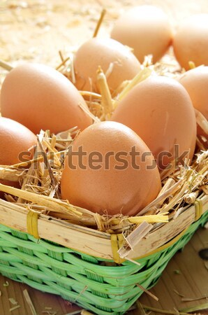 brown eggs in a basket Stock photo © nito