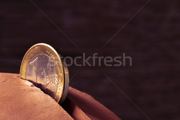 one euro coin in a piggy bank Stock photo © nito