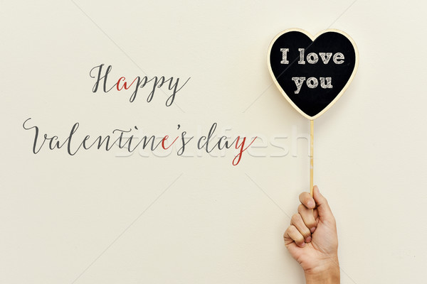 text happy valentines day and I love you Stock photo © nito
