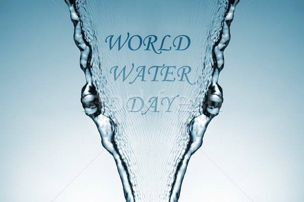 world water day Stock photo © nito