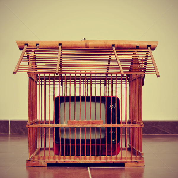 television in a birdcage Stock photo © nito