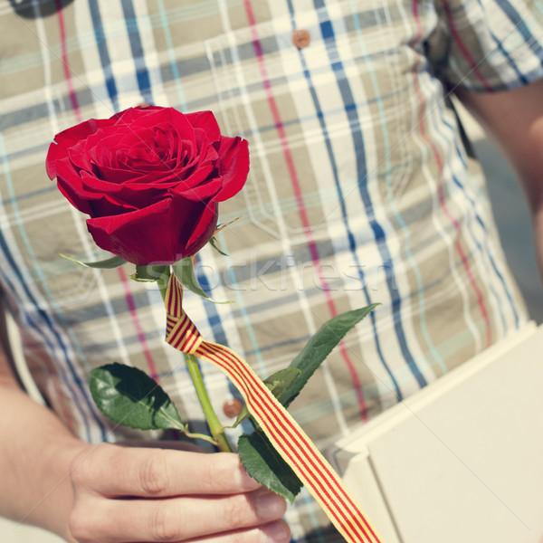 Stock fotó: Könyv · piros · rózsa · zászló · szent · fiatalember · nap