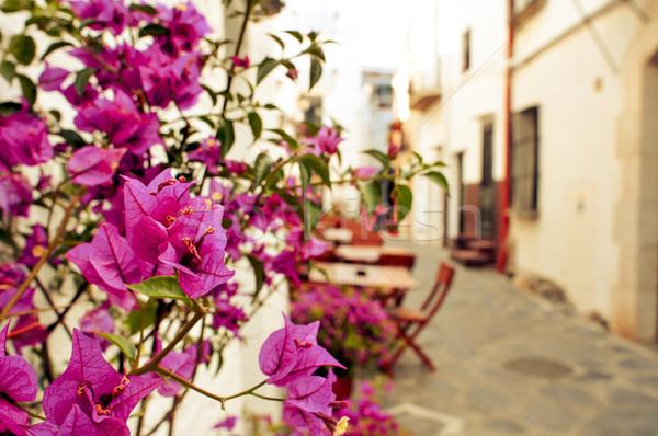 charming street in Cadaques, Costa Brava, Spain Stock photo © nito
