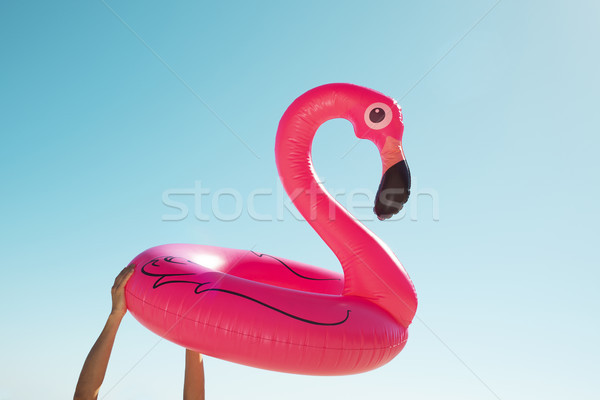 Homem rosa flamingo nadar anel Foto stock © nito
