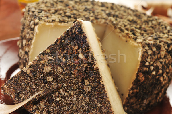 handmade spice-coated cheese from Spain Stock photo © nito